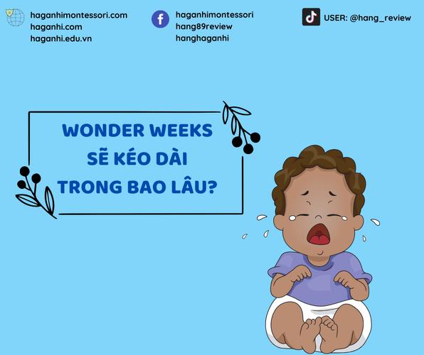 WONDER WEEKS SẼ KÉO DÀI TRONG BAO LÂU?